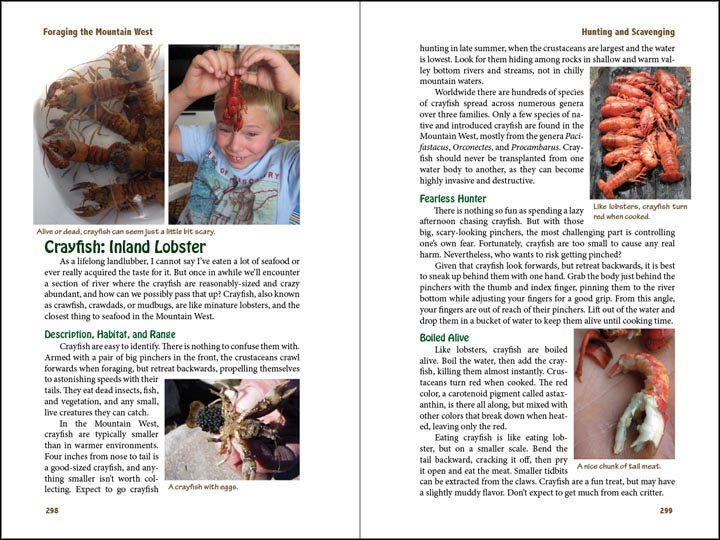 Crayfish, sample page from Foraging the Mountain West.