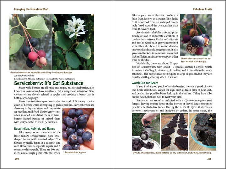 Serviceberry, sample page from Foraging the Mountain West.