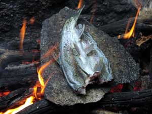 Cooking trout on a rock.