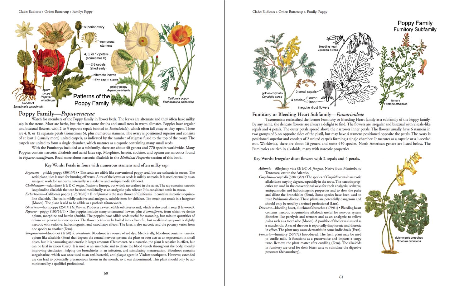 botany in a day pdf - Dolap.magnetband.co