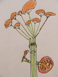 Child's drawing of the Parsley Guardian.